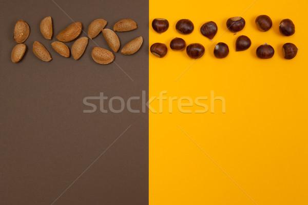Orzechy rząd brązowy pomarańczowy powłoki surowy Zdjęcia stock © szabiphotography