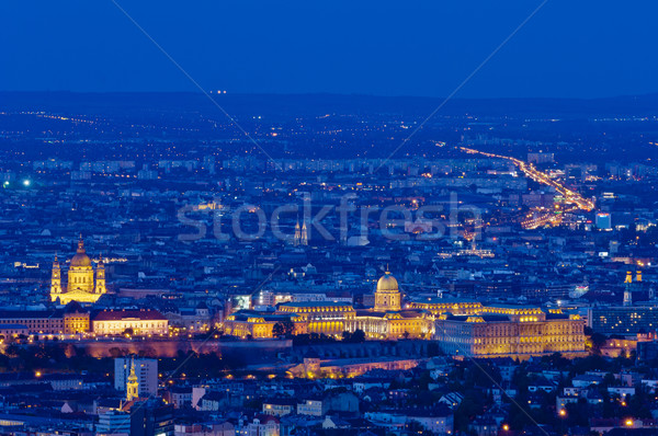 Skyline of Budapest Stock photo © szabiphotography