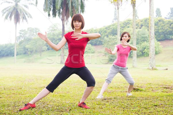 ázsiai gyakorol tai chi szabadtér lányok park Stock fotó © szefei