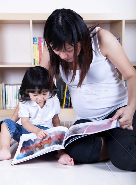 Home education. Stock photo © szefei