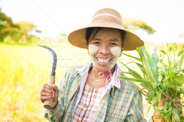 Traditional mature Burmese female farmer Stock photo © szefei