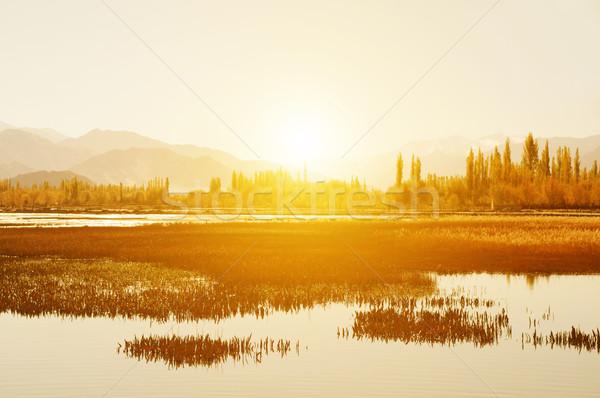 Pesce stagno monastero sunrise view Foto d'archivio © szefei