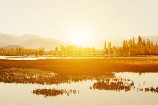 Peixe lagoa mosteiro nascer do sol ver Foto stock © szefei