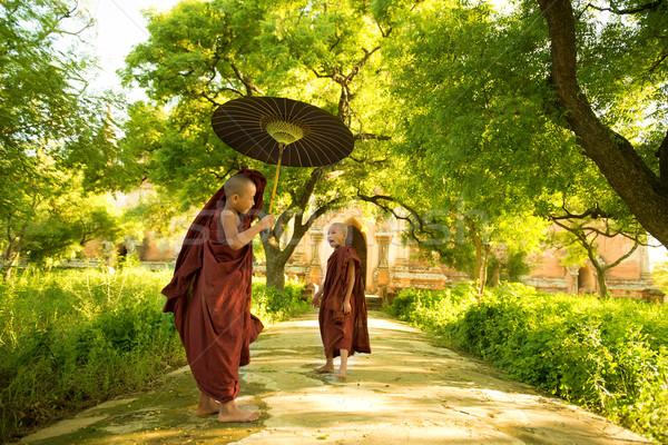 Fiatal buddhista kezdő kettő kicsi sétál Stock fotó © szefei