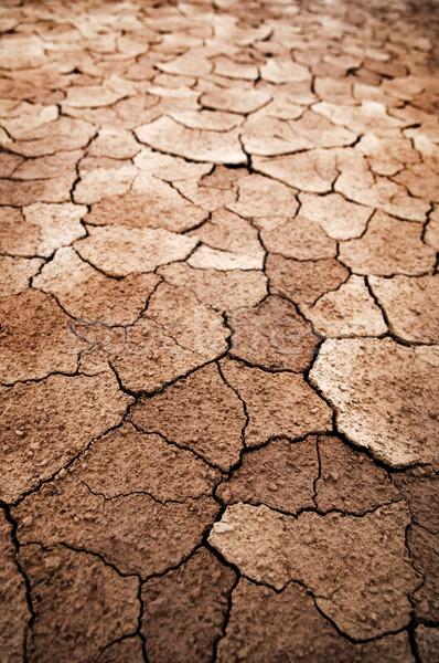 Dry cracked earth Stock photo © szefei