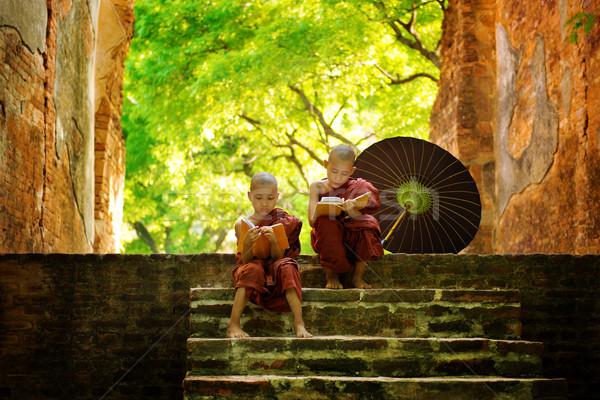 Monnik lezing buitenshuis jonge vergadering Stockfoto © szefei