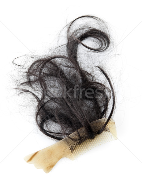 Hair fall Stock photo © szefei