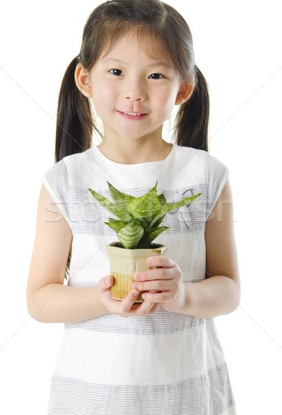 Go Green Stock photo © szefei