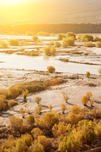 Rivier zonsopgang seizoen noord-india water Stockfoto © szefei