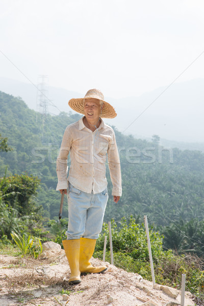 Worker cleaning land  Stock photo © szefei