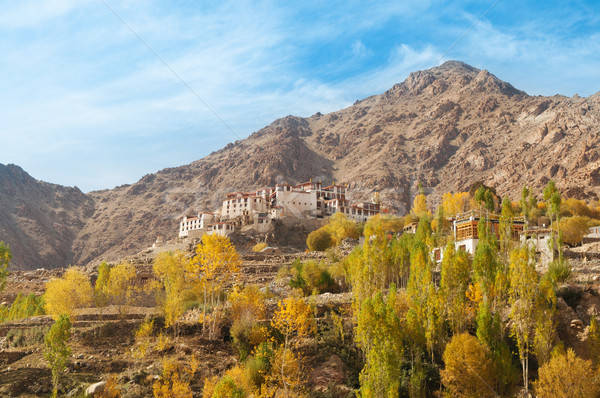 Alchi Monastery in Leh Stock photo © szefei