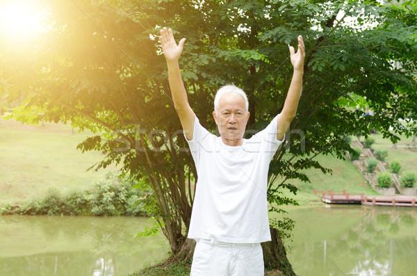 Idős férfi gyakorol küzdősportok park portré egészséges Stock fotó © szefei