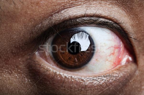 Lelijk oog menselijke naar achtergrond Stockfoto © szefei