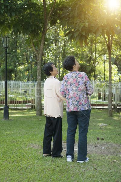 背面図 アジア 高齢者 女性 徒歩 率直な ストックフォト © szefei