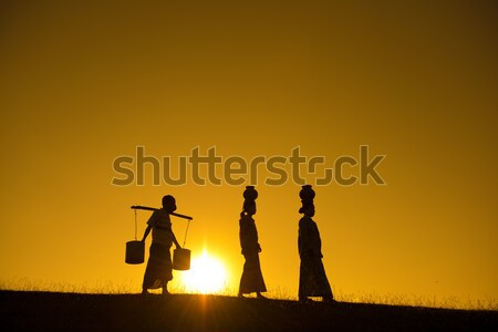 Silhouette of Asian traditional farmers  Stock photo © szefei