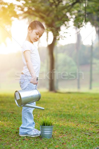 Asian child watering plant outdoors. Stock photo © szefei