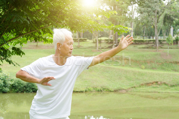 Old people practicing qigong in the park  Stock photo © szefei