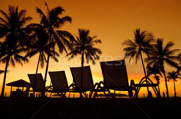Tropical Sunset Stock photo © szefei
