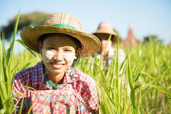 Traditioneel Myanmar vrouwelijke boeren werken veld Stockfoto © szefei
