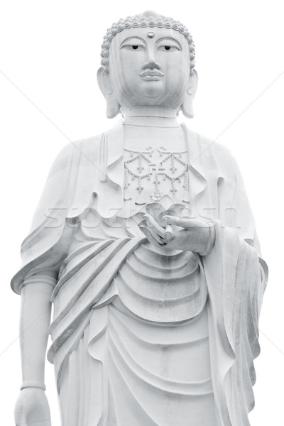Buda dev heykel yalıtılmış beyaz çiçek Stok fotoğraf © szefei