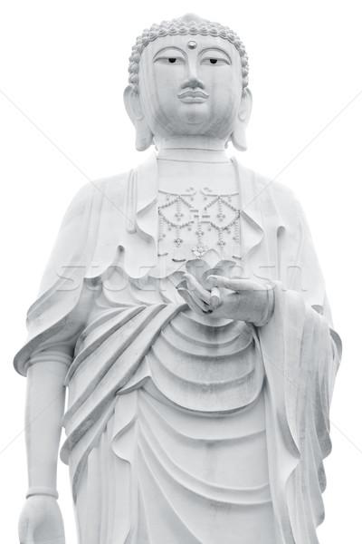 Buddha reus standbeeld geïsoleerd witte bloem Stockfoto © szefei