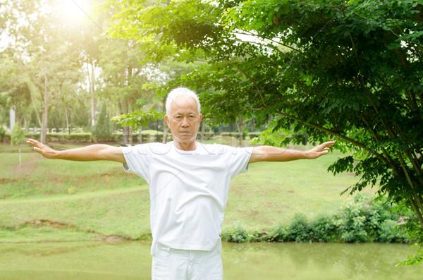 Senior mensen oefenen vechtsporten park portret Stockfoto © szefei