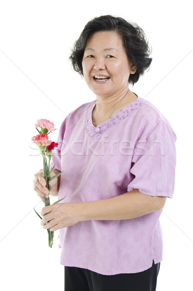 гвоздика цветок подарок 60-х годов азиатских Сток-фото © szefei