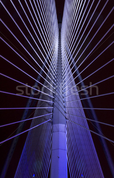 Hangbrug abstract gebouw landschap ontwerp Stockfoto © szefei