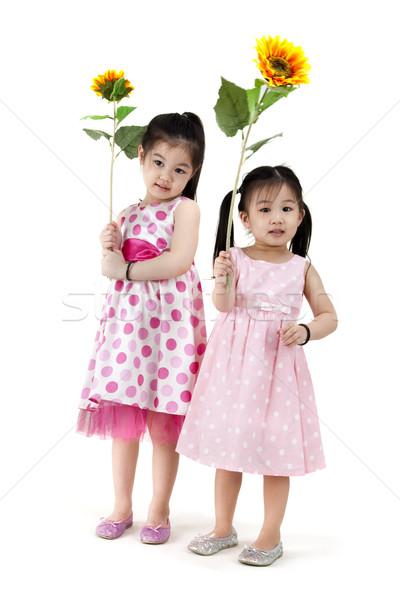 Meisjes zonnebloem witte vrouw kinderen haren Stockfoto © szefei