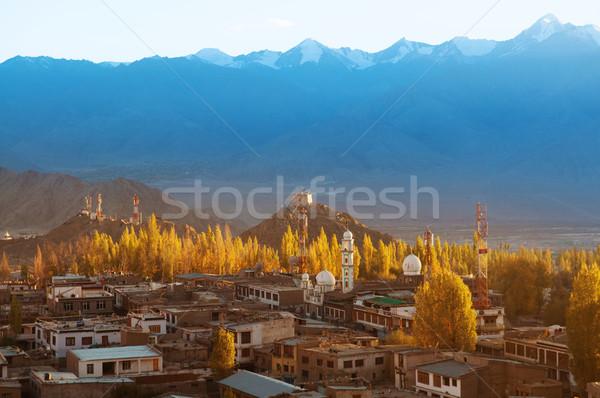 Stad noordelijk Indië stad Stockfoto © szefei