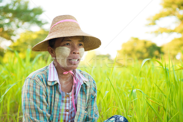 Mature Myanmar farmer Stock photo © szefei