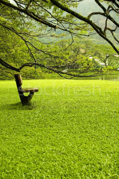Loneliness Stock photo © szefei
