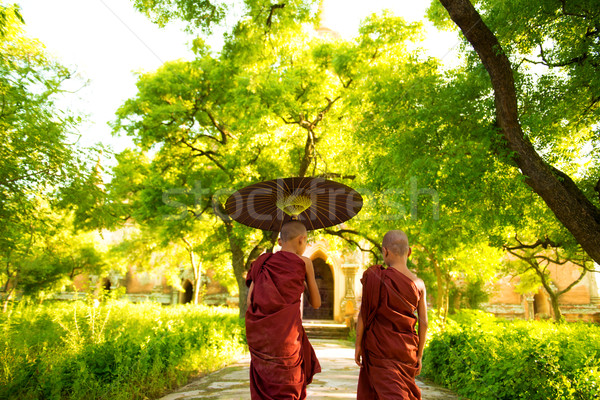 Buddhist monks  Stock photo © szefei
