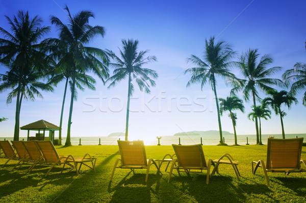 Praia pôr do sol céu luz jardim Foto stock © szefei