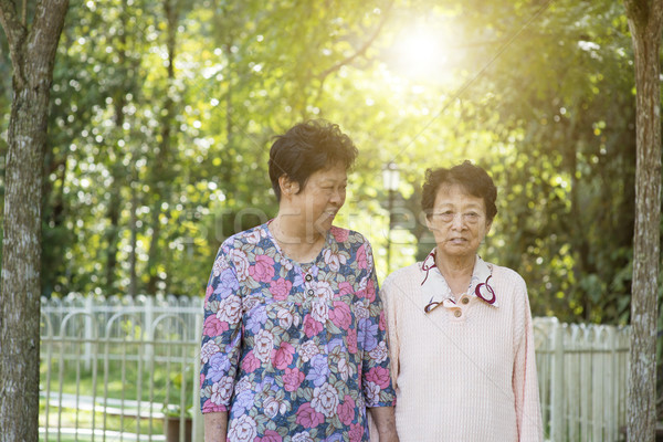 Asian elderly women morning walk at outdoor Stock photo © szefei