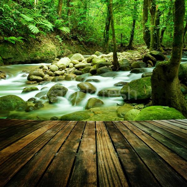 Hegy vízesés faburkolat nézőpont természetes textúra Stock fotó © szefei