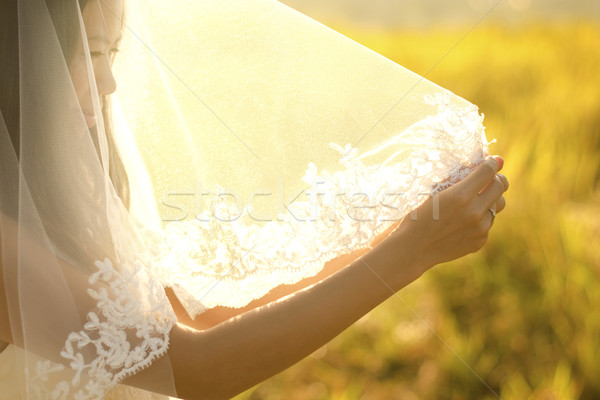 Gelin peçe Asya açık sabah altın Stok fotoğraf © szefei