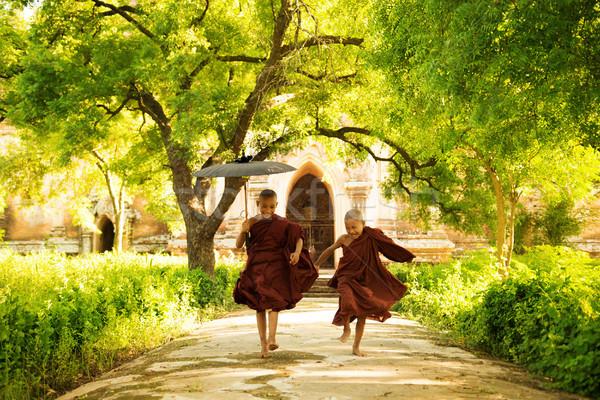 Twee weinig lopen buitenshuis boom man Stockfoto © szefei