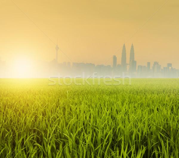 Alan şehir görmek tarla sabah gündoğumu Stok fotoğraf © szefei
