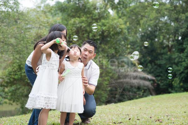 Family blowing soap bubbles at park Stock photo © szefei