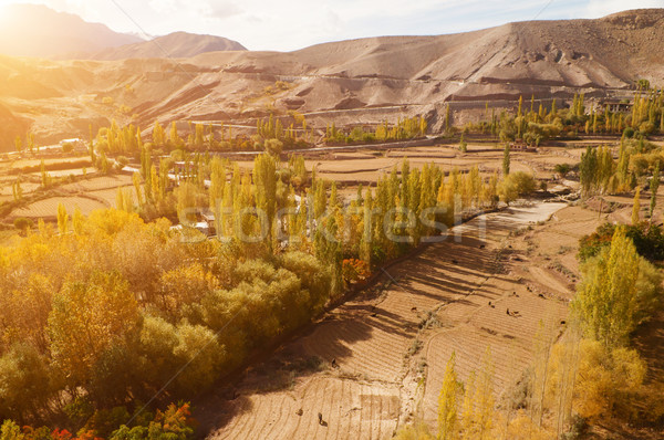 Village paysage Inde belle paysages faible Photo stock © szefei