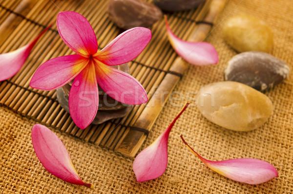 Spa tropicales naturaleza masaje piedra bambú Foto stock © szefei