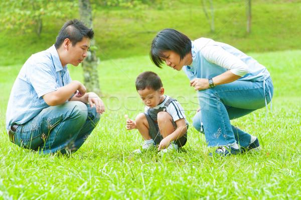 アジア 家族 率直な 屋外 女性 自然 ストックフォト © szefei
