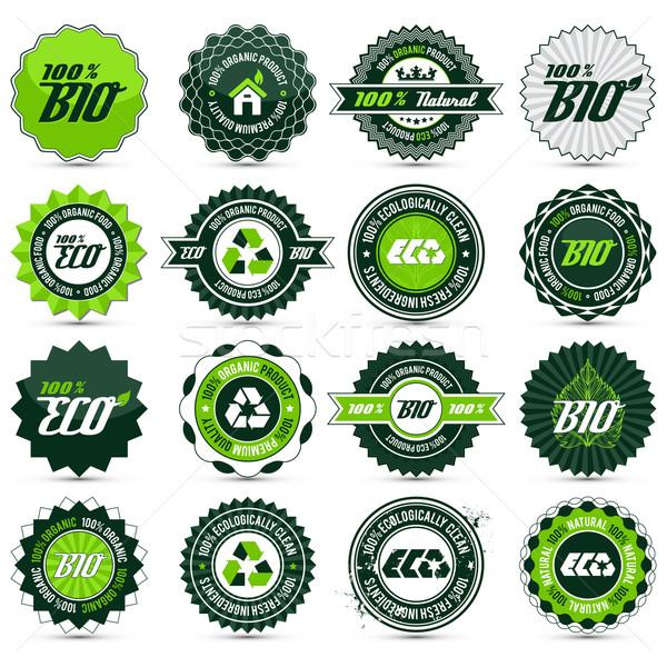 Eco label ingesteld 16 groene bio Stockfoto © szsz