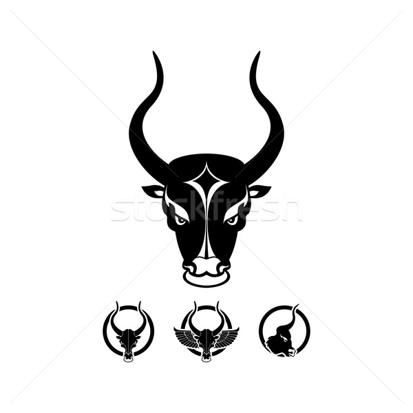 black isolated bull head Stock photo © szsz