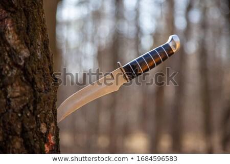 öreg · vadászat · kés · rozsdás · fából · készült · izolált - stock fotó © inxti