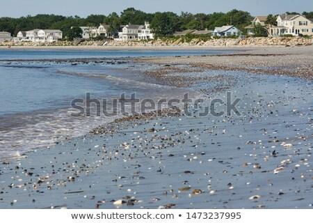 maine beach houses stock photo © jsnover