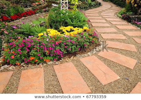 stone walkway and stone bench stock photo © ansonstock
