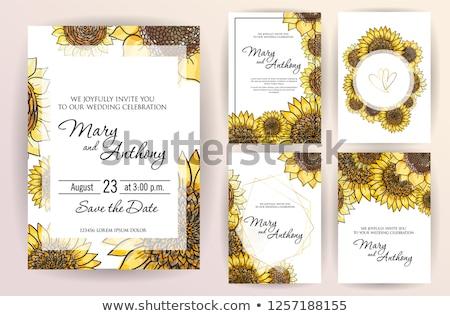 Napraforgók kártya napraforgó pillangó szivárvány illusztráció Stock fotó © elly_l