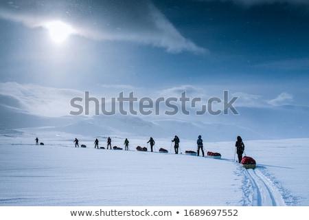 Polar Forschungsreise Winter Abenteuer führen unfruchtbar Stock foto © SimpleFoto